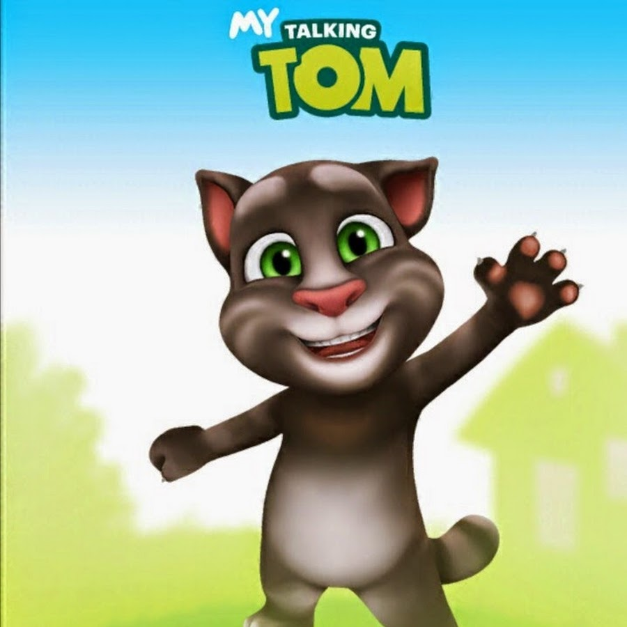 The Game Talking Tom Cat
